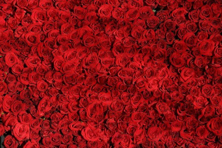 ФОТО: Наместо торта, за роденден доби 1001 роза