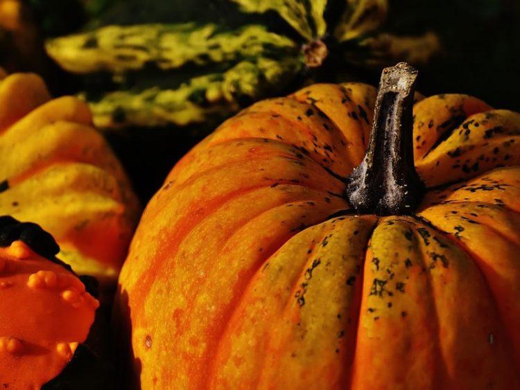 Деликатес за есента: Вкусни уштипци од тиква