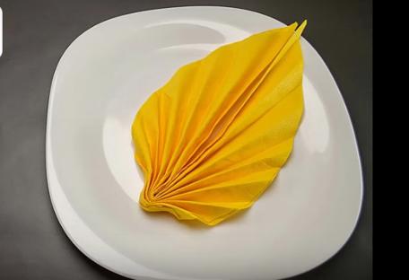 ВИДЕО: Со една салфетка е можно ова – ќе заборавите се досега