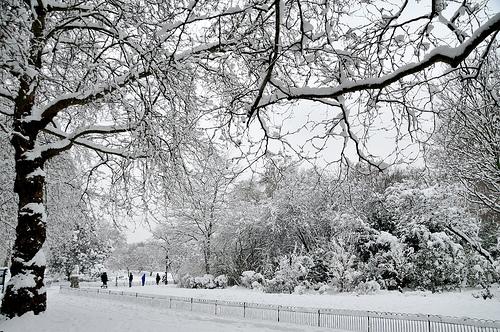 ВРЕМЕНСКА: Следува поларен студ – очекувајте екстремно ниски температури
