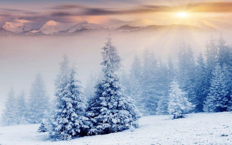 Екстремен студ, зимата го покажа своето – Македонија во бело