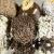 Најбрзи ситни колачиња: Пијани бомбици