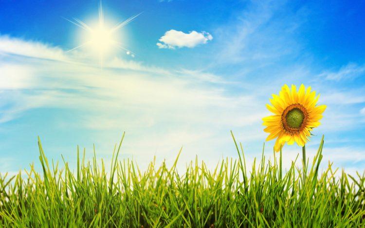 Сончево и топло за продолжениот викенд – од вторник нагло опаѓање на температурите