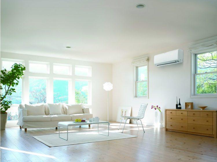 Природен освежувач за дома, ќе ги избрка и комарците – евтино и корисно