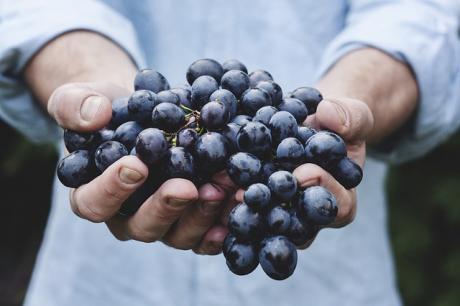 Светски познатиот онколог открива каква храна да се јаде во почетната фаза на карциномот