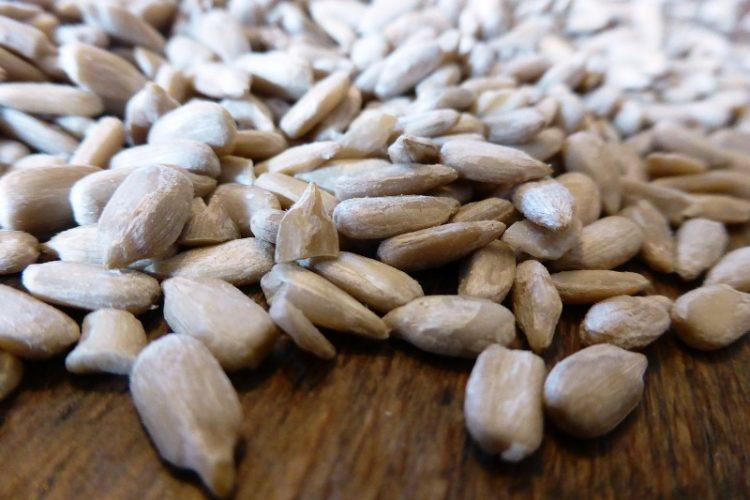 Помагаат за тешки состојби – Зошто да јадеме сончоглед