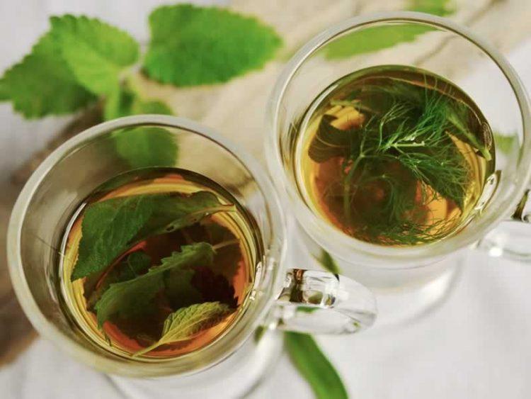 Заборавете на вртоглавица, висок холестерол и болести на штитната жлезда со овој чај
