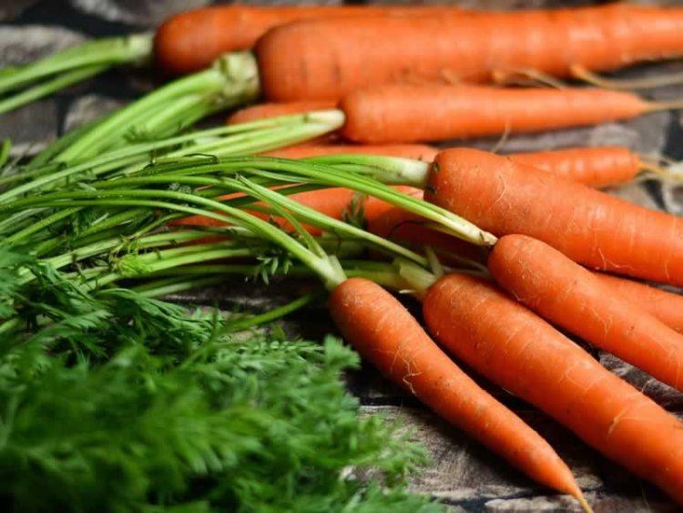 Морковот правилно се чува вака – нема да скапе долго време