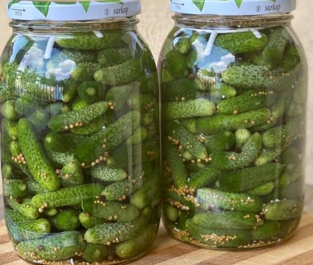 Како да направите кисели краставички – бејби корнишони од тегла