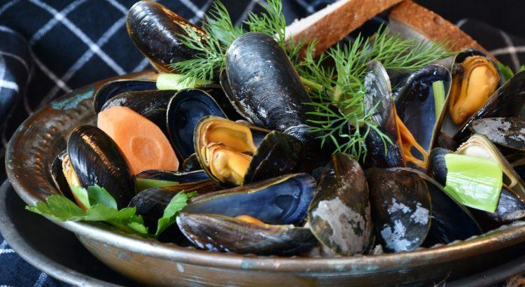 Здравје меѓу две лушпи – Зошто да јадеме школки?