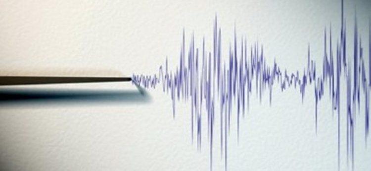 Утрово земјотрес ја стресе Македонија