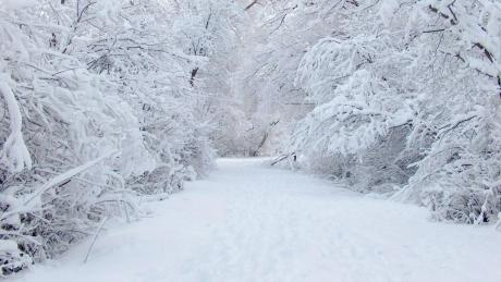 Рекордно ниски температури во Македонија утрово