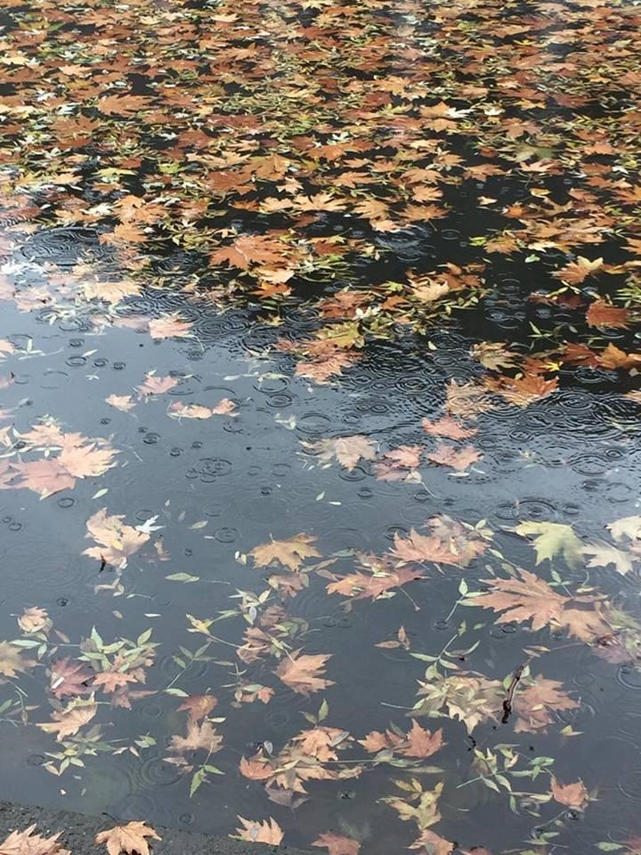 Викенд временска: Дожд па пресврт со времето