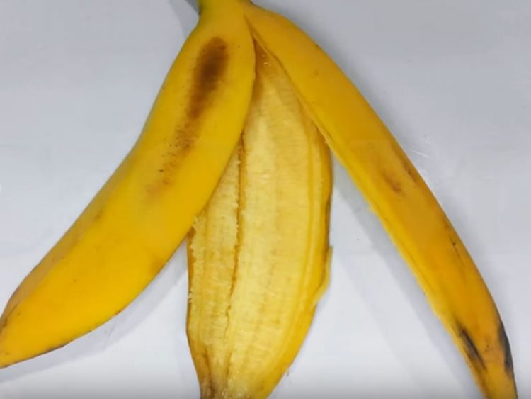 Image result for kora banana