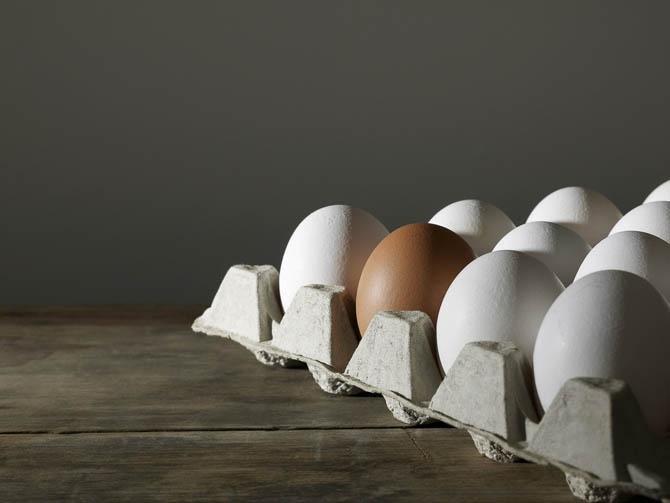 Која е разликата меѓу жолтите и белите јајца? – кои се поздрави?